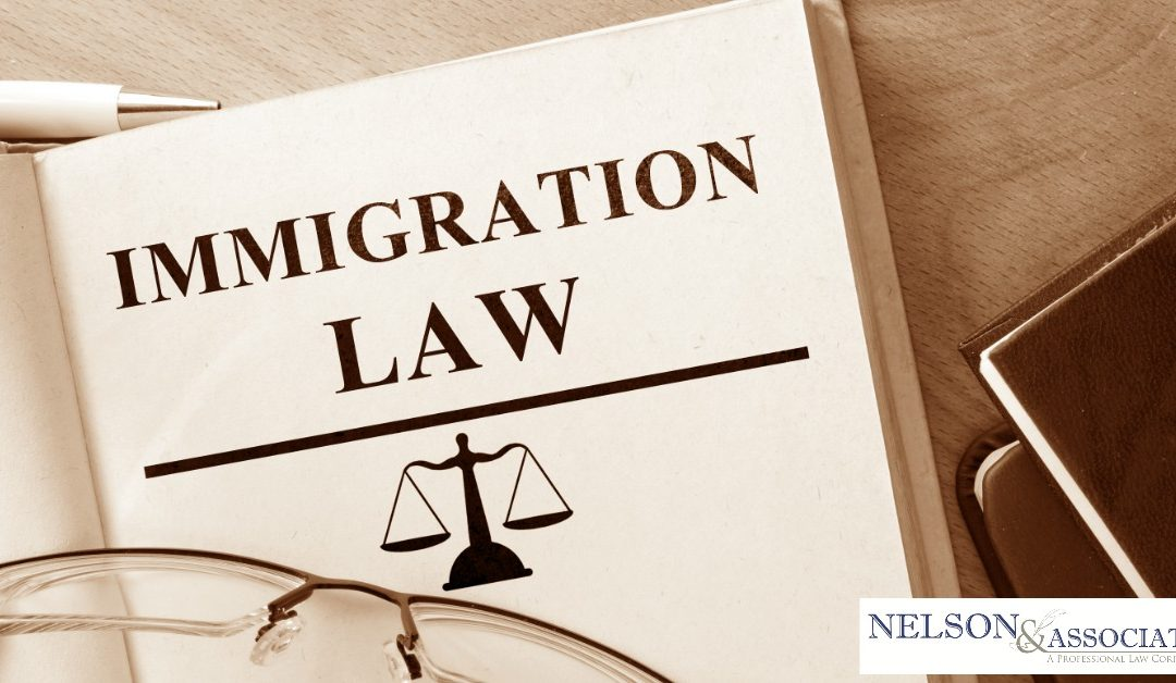 Areas of Practice: Immigration Law